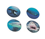 SHARK PARTY Photo Realistic Sharks Stickers Jaws Sticker Pack of 50 Free Postage