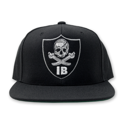 "Buy – Internal Bleeding ""Raiders"" Snapback – Band & Music Merch – Massacre Merch"