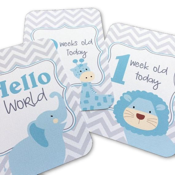Jungle Blue Milestone Cards - Little Branches Boutique