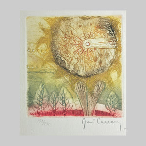 René Carcan | Abstract Colour Aquatint Etching - Thistle