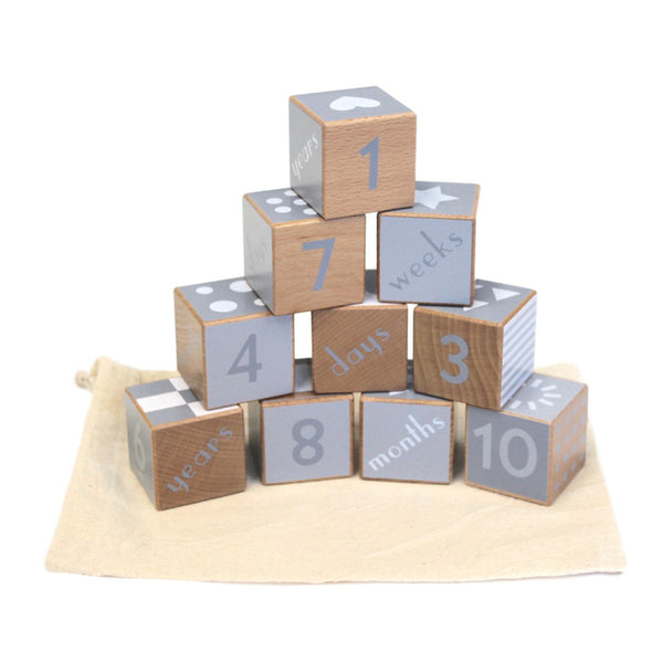 Discoveroo Wooden Shape and Number Blocks