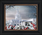 Idaho Falls Temple - Winter