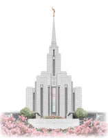 Oquirrh Mountain Temple - Celestial Series