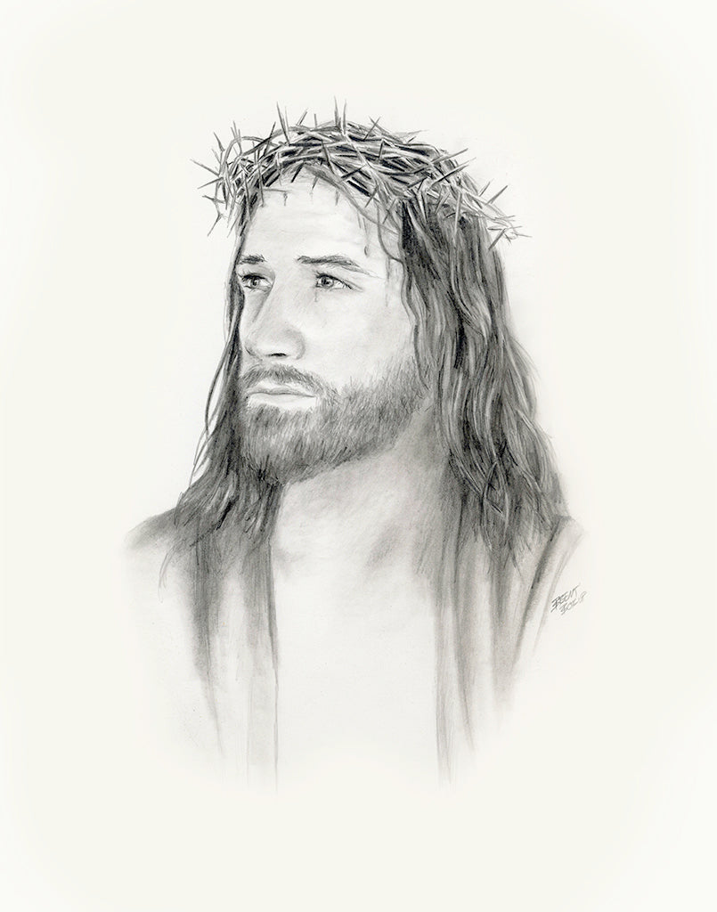 Crown of Thorns - Original Pencil Drawing