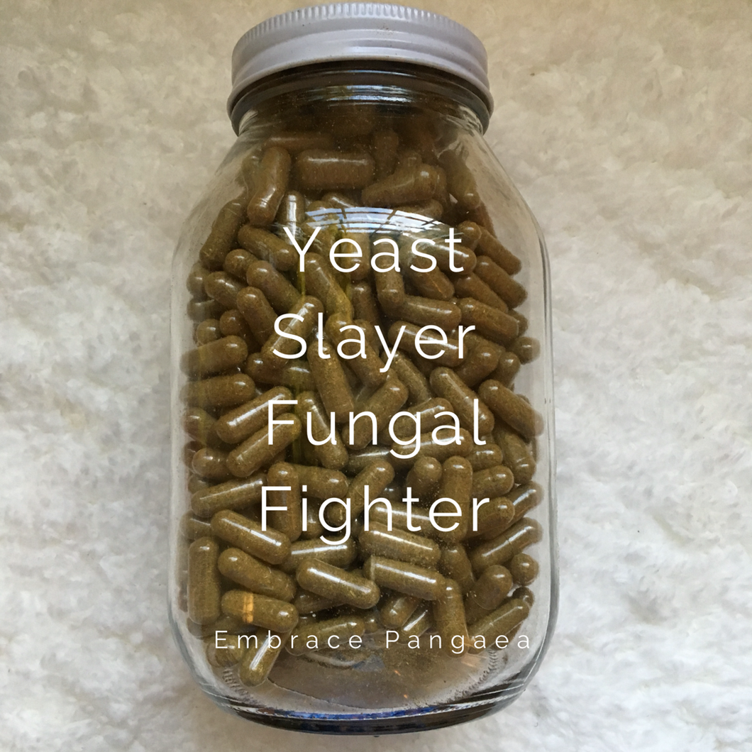 Yeast Slayer Fungal Fighter - Candida Complex