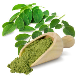 Organic Moringa Leaf Powder - 3.8 oz (108.5g)
