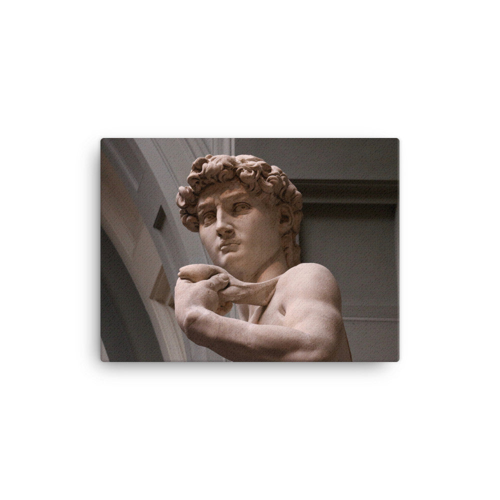 Canvas - Michelangelo's David