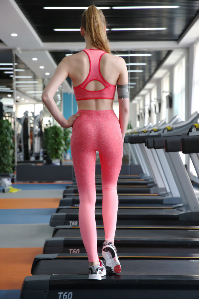 High Waist Ombre Active Leggings - Avalon88