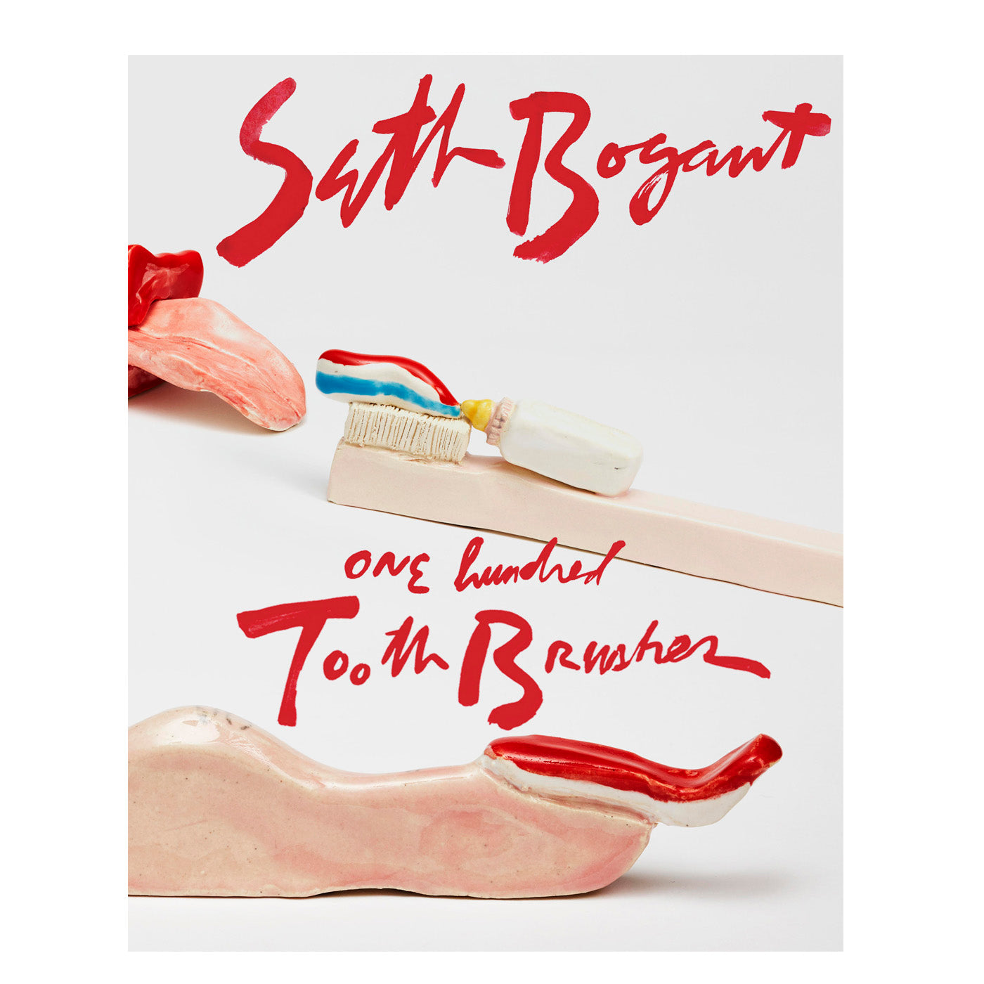 "Seth Bogart ""100 Toothbrushes"" Book"
