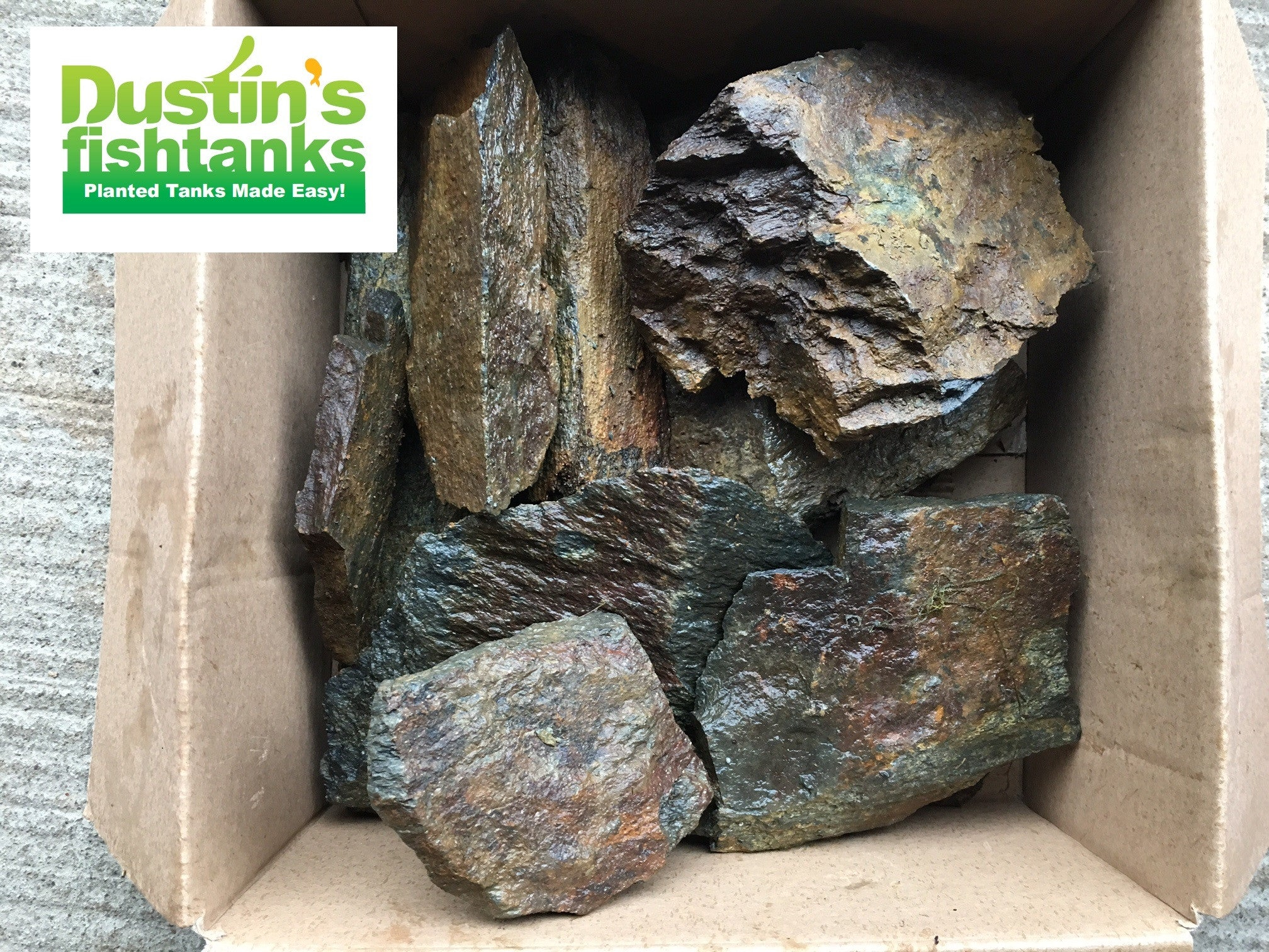 Aquascaping Rocks! – DustinsFishtanks