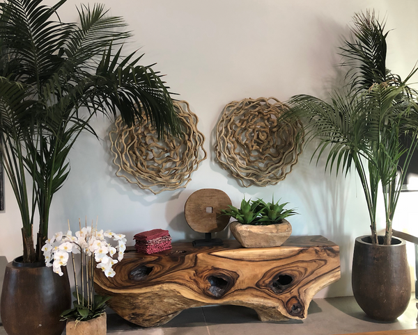 Embellish your Home Décor with our Palm Pots