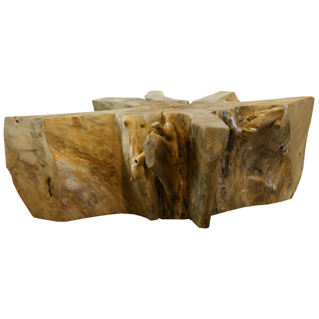 Square Acacia Root Coffee Table