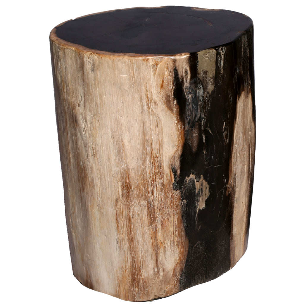petrified wood stool block ivory and black petrified wood stools side table round petrified stool 1023 organic findings