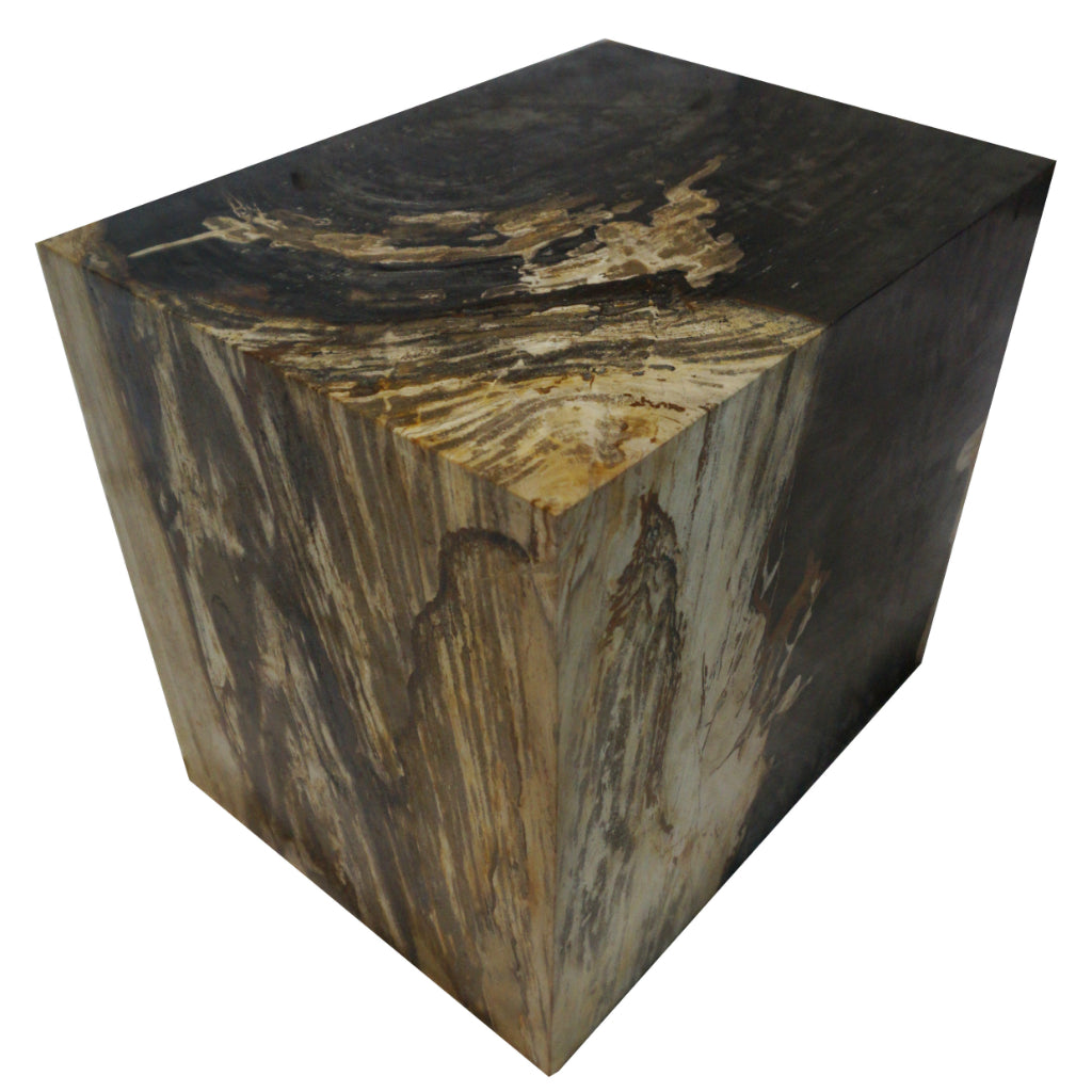 polished rectangular petrified wood stool side table