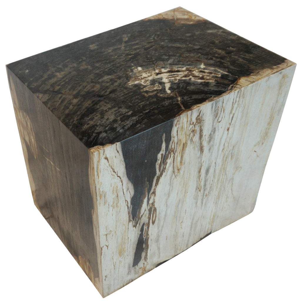 Polished Rectangular Petrified Wood Stool Side Table Side View
