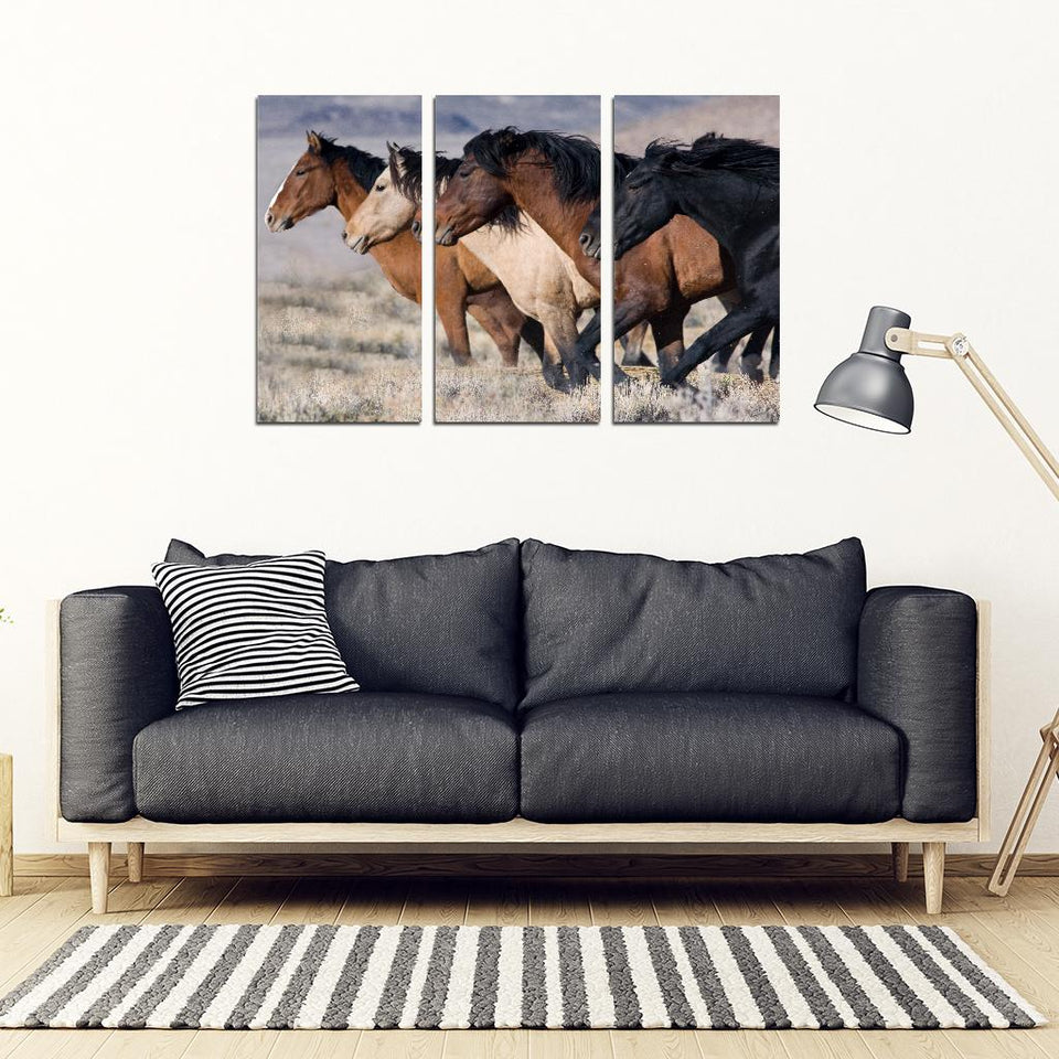 Three horses -  3 Piece Framed Canvas (USA only)