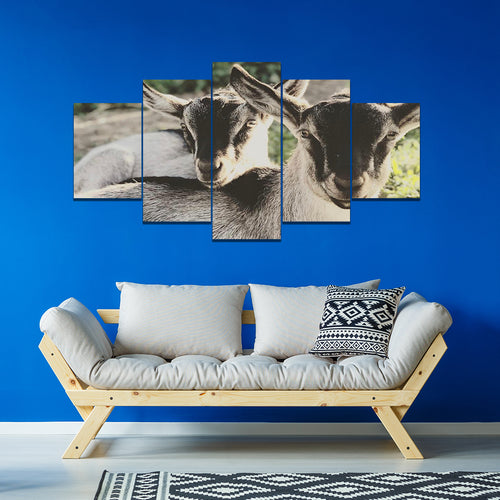 Wall Art 5pcs - Goat Lovers 03