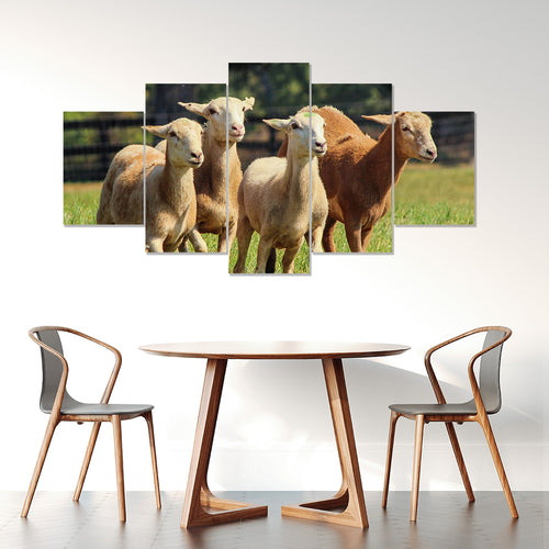 Wall Art 5pcs - Goat Lovers 04