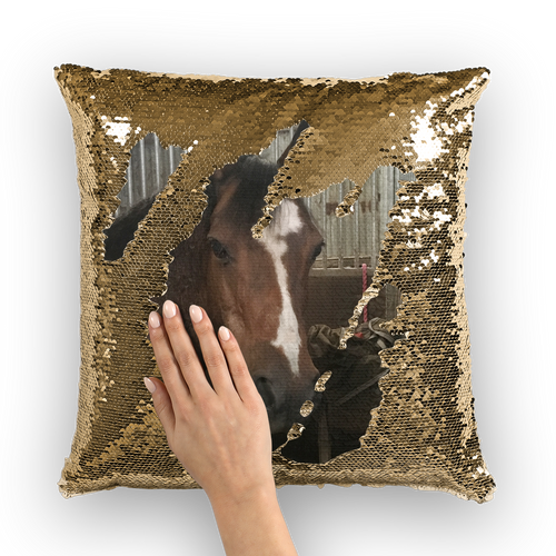 Photo by Alison - Sequin Cushion Cover