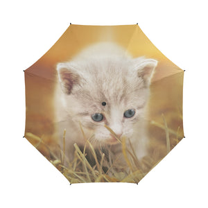 Cat 7  Umbrella