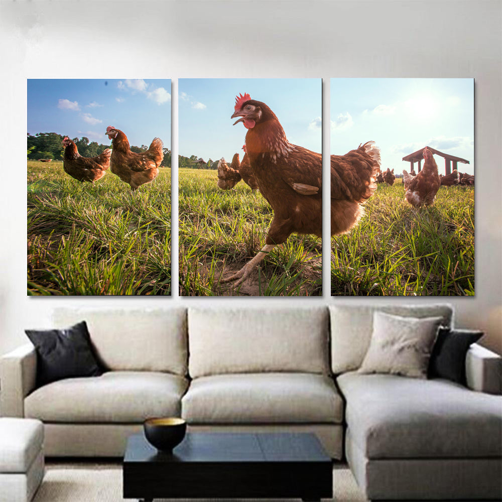 Wall art 3 pcs - Chicken Lovers 03