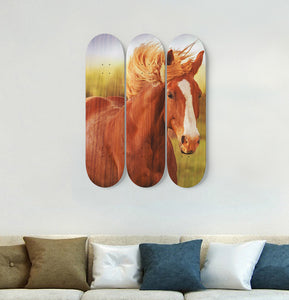 3 Skateboard Wall Art - Horse 06