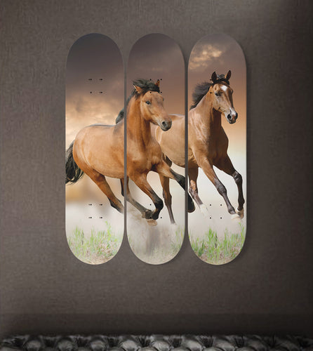 3 Skateboard Wall Art - Horse 01