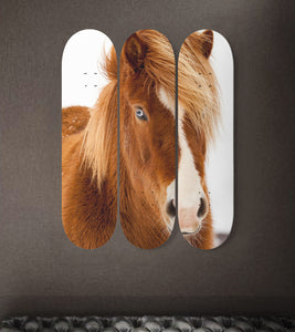 3 Skateboard Wall Art - Horse 02