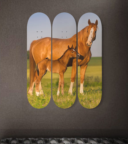 3 Skateboard Wall Art - Horse 03
