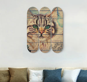3 Skateboard Wall Art - Cat 04