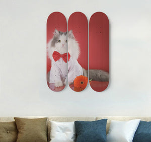 3 Skateboard Wall Art - Cat 03