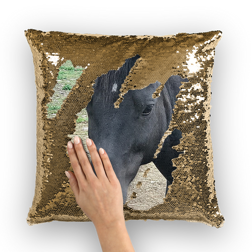 Photo by Marcia - Sequin Cushion Cover