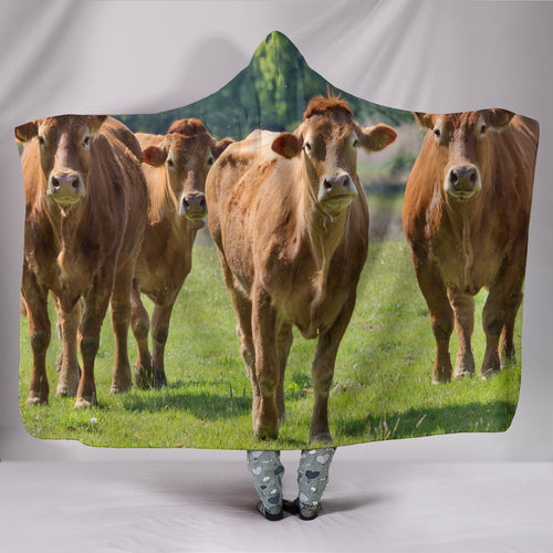 Hooded Blanket - cow style 13