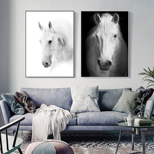 Art Horse Black and White Print Canvas Poster