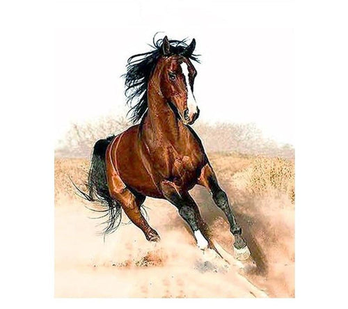 Running Horse Landscape DIY Painting By Numbers Drawing Painting On Canvas HandPainted