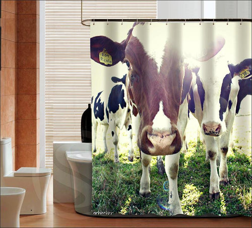 Stylish Dairy cow Shower Curtain-02