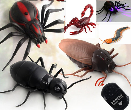 Funny Remote Control Insect Toy for our Cats