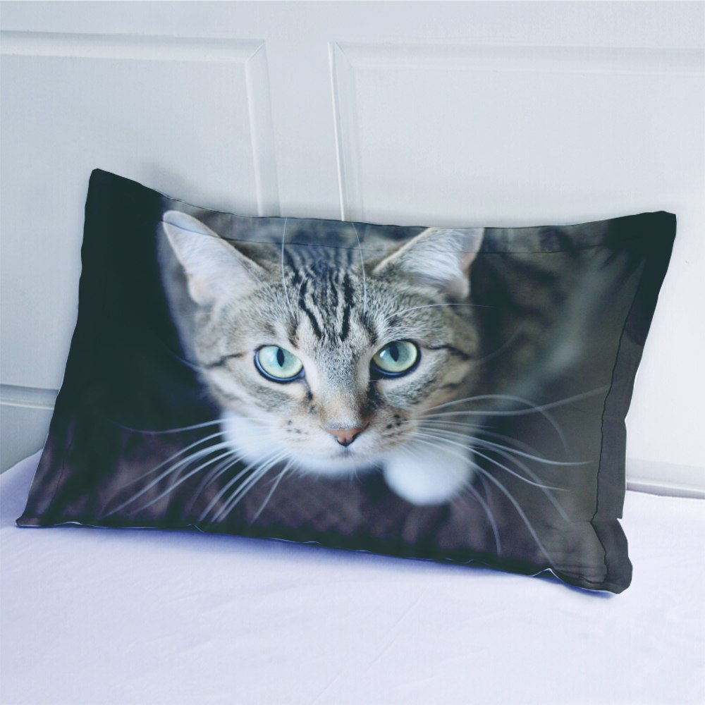 High-definition Print Cute Cat Bedding Set King Queen Full