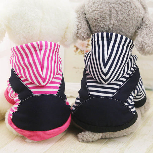 Yorkshire Terrier Clothes Winter New Costume Cute Stripe