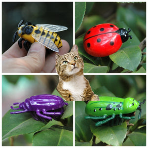 Battle Bugs in 4 Designs, Battery Powered Mini Toys For Cats