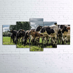 5 piece canvas Cow On Farm Canvas picture decor print poster