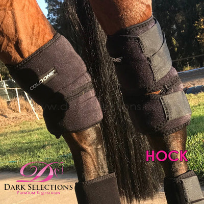 COLD ONE® Ice Compression 3 in 1 - Hoof, Hock & Knee Boot