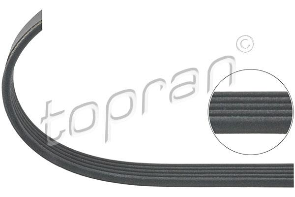 BMW Ribbed V-Belt 5PK1005 Climate Compressor M60 to 09/97