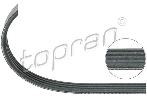 BMW Ribbed V-Belt 4PK889 Climate Compressor E36 Z3 M43 M44 11281743193