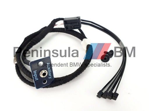 BMW Auxiliary Connection Retrofit Kit E60 E61 E63 E64 X3 X5 Z4 65120153502