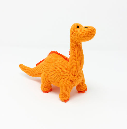 Dippy the Dinosaur Rattle