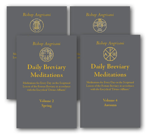 Daily Breviary Meditations - 4 volume set