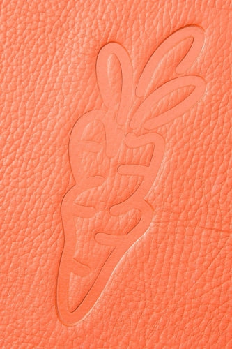 THE HUNDREDS x CARROTS - LEATHER SUEDE TRAY