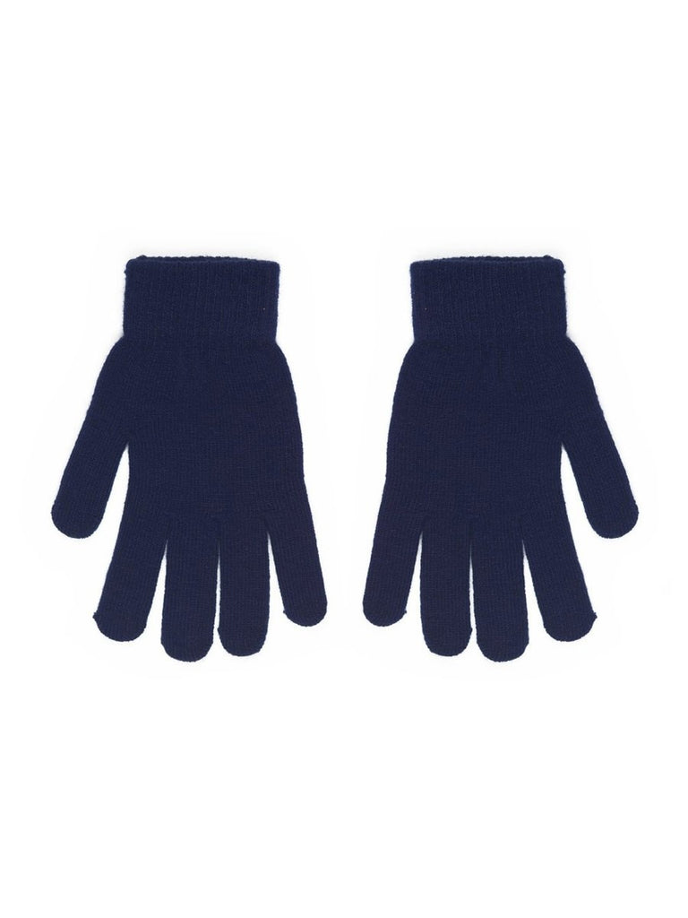 CARROTS KNIT GLOVE - NAVY