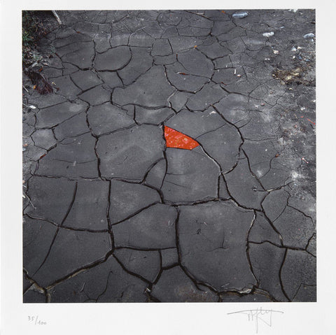 Andy Goldsworthy - Red leaves on cracked earth
